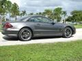Mercedes-Benz SL 65 AMG Roadster Pewter Metallic photo #10