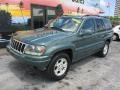 Jeep Grand Cherokee Laredo Onyx Green Pearlcoat photo #6