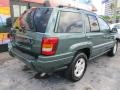 Jeep Grand Cherokee Laredo Onyx Green Pearlcoat photo #9