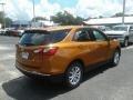 Chevrolet Equinox LS Orange Burst Metallic photo #5