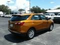 Chevrolet Equinox LS Orange Burst Metallic photo #5