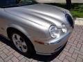 Jaguar S-Type 3.0 Platinum Metallic photo #65