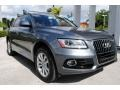 Audi Q5 2.0 TFSI Premium Plus quattro Monsoon Gray Metallic photo #2