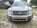 Ford Escape Limited Sterling Gray Metallic photo #1