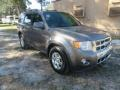 Ford Escape Limited Sterling Gray Metallic photo #4