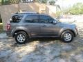 Ford Escape Limited Sterling Gray Metallic photo #6