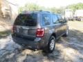 Ford Escape Limited Sterling Gray Metallic photo #11