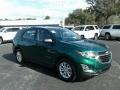 Chevrolet Equinox LS Ivy Metallic photo #7