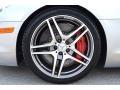 Mercedes-Benz SLS AMG Roadster Iridium Silver Metallic photo #27