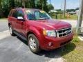Ford Escape XLT V6 Redfire Metallic photo #7