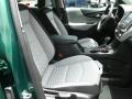Chevrolet Equinox LS Ivy Metallic photo #12