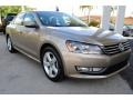 Volkswagen Passat Wolfsburg Edition Sedan Titanium Beige photo #2