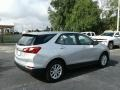 Chevrolet Equinox LS Silver Ice Metallic photo #5