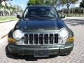 Jeep Liberty Limited Jeep Green Metallic photo #16
