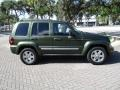 Jeep Liberty Limited Jeep Green Metallic photo #24