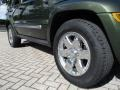 Jeep Liberty Limited Jeep Green Metallic photo #31