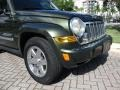Jeep Liberty Limited Jeep Green Metallic photo #38