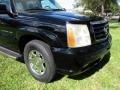 Cadillac Escalade ESV AWD Sable Black photo #28