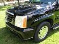 Cadillac Escalade ESV AWD Sable Black photo #59