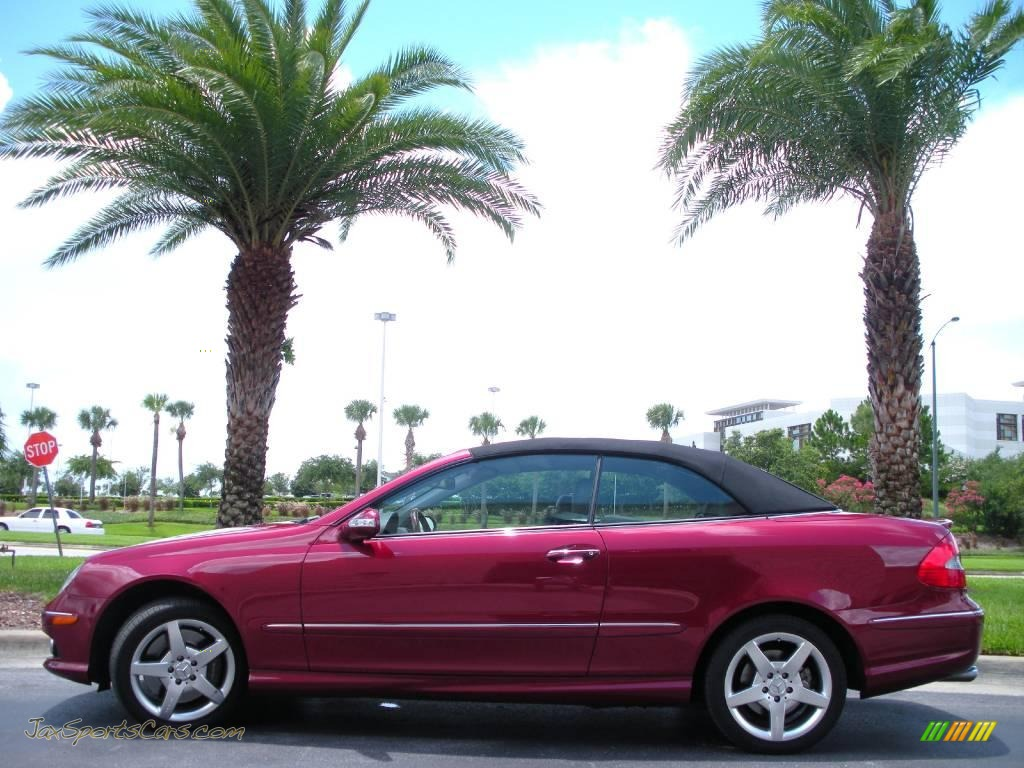 2006 mercedes benz clk 500 cabriolet in storm red metallic for 2006 mercedes benz clk 500