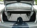 Chrysler 300 Touring Maximum Steel Metallic photo #19