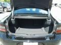 Dodge Charger SXT Pitch Black photo #19