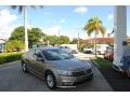 Volkswagen Passat S Sedan Titanium Beige photo #1