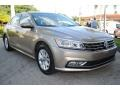 Volkswagen Passat S Sedan Titanium Beige photo #2