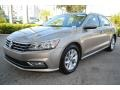 Volkswagen Passat S Sedan Titanium Beige photo #5