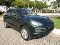 Porsche Cayenne S Jet Green Metallic photo #13