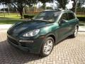 Porsche Cayenne S Jet Green Metallic photo #26