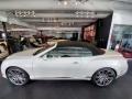 Bentley Continental GTC Speed Arctica White photo #9
