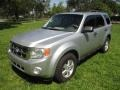 Ford Escape XLT V6 Ingot Silver Metallic photo #1