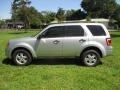 Ford Escape XLT V6 Ingot Silver Metallic photo #3