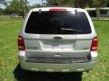 Ford Escape XLT V6 Ingot Silver Metallic photo #7