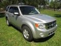 Ford Escape XLT V6 Ingot Silver Metallic photo #13