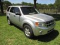 Ford Escape XLT V6 Ingot Silver Metallic photo #25