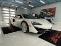 McLaren 570GT Coupe Silica White photo #1