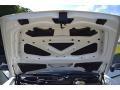 Bentley Continental GT GT3 R Glacier White photo #61