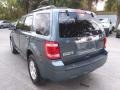 Ford Escape Limited V6 Steel Blue Metallic photo #5
