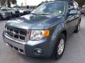 Ford Escape Limited V6 Steel Blue Metallic photo #7