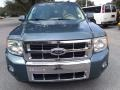 Ford Escape Limited V6 Steel Blue Metallic photo #8