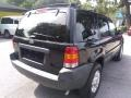 Ford Escape XLT V6 Black Clearcoat photo #3