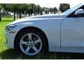 BMW 3 Series 320i Sedan Alpine White photo #20
