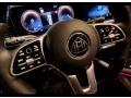 Mercedes-Benz GLS Maybach 600 Black photo #16