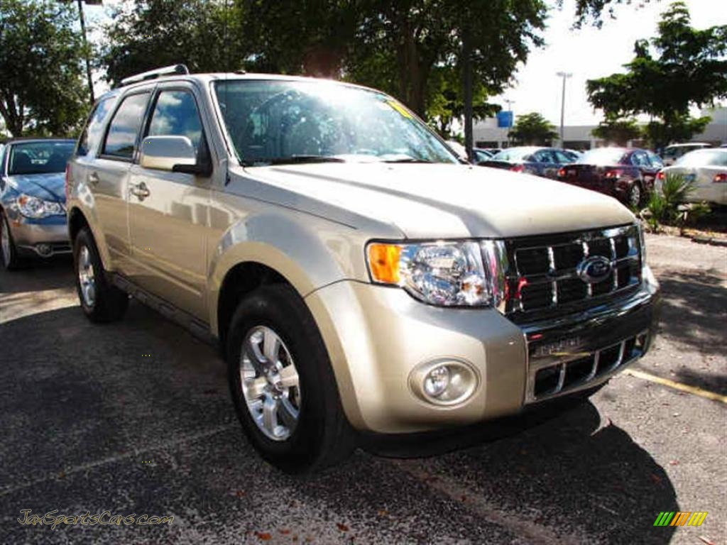 2010 ford escape limited v6 in gold leaf metallic b77617 jax sports cars cars for sale in