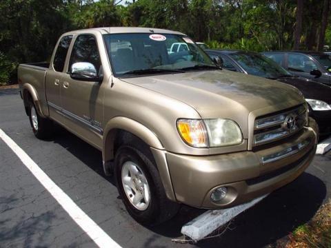toyota tundra rock warrior. 2008 Toyota Tundra Double Cab