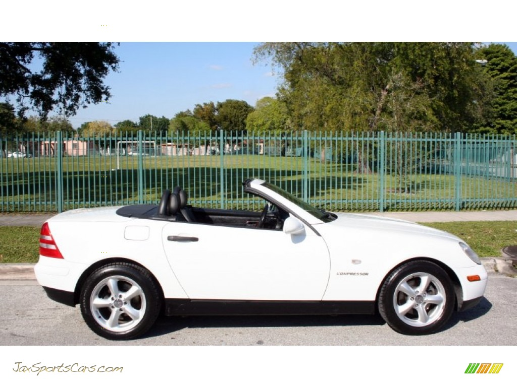 1998 mercedes benz slk 230 kompressor roadster in polar white photo 25 078478 jax sports. Black Bedroom Furniture Sets. Home Design Ideas
