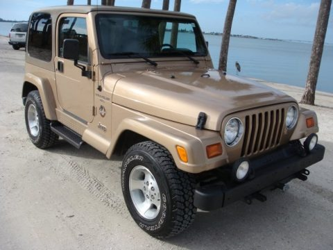 1992 jeep wrangler sahara 4x4 in light champagne metallic 524668 jax sports cars cars for. Black Bedroom Furniture Sets. Home Design Ideas